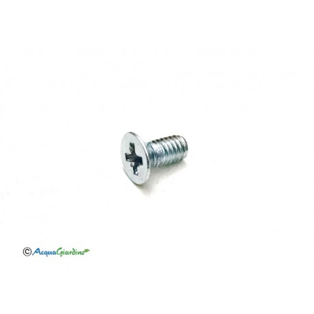 Screw 4x8 assembly for solenoid Aquauno, Aquadue series